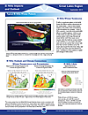 El Nino Impacts and Outlooks